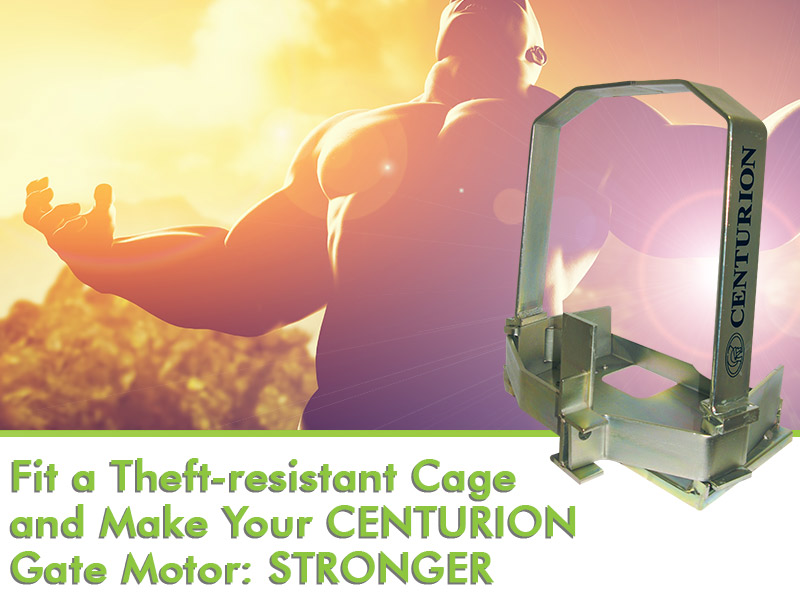 Anti theft motor cage